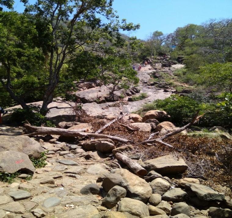 Stony Jagged Path