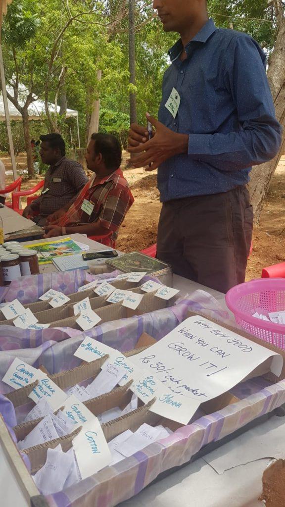 Native Seeds Display